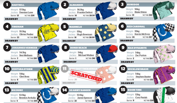 Nz cup sweepstake 2018