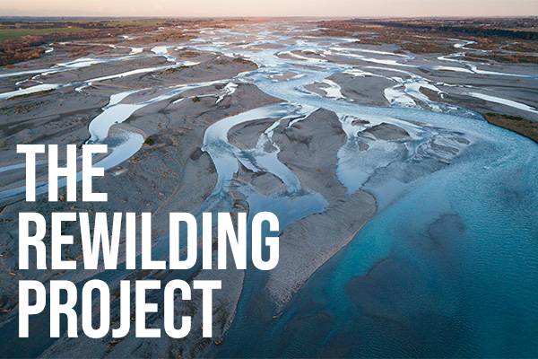 The Rewilding Project