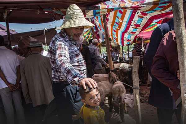 The fight for Xinjiang